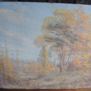 Huile Sur Carton Vintage – Paysage Forestier