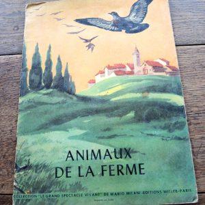 Livre Pour Enfant Vintage : animaux