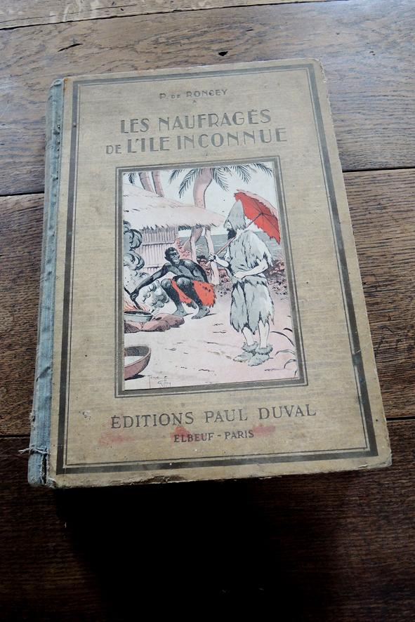 livre-ancien-pour-enfants-les-naufrages-de-lile-inconnu