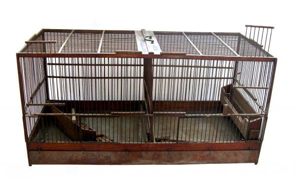 cage-a-oiseaux-ancienne