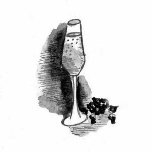 Champagne Glasse