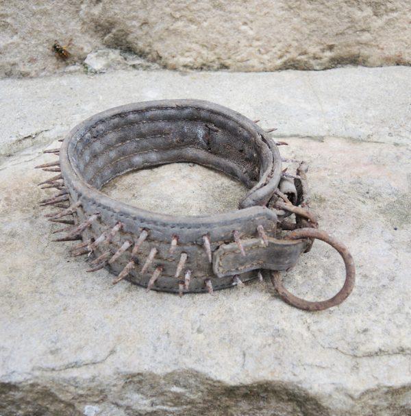 ancien-collier-de-chien-cloute