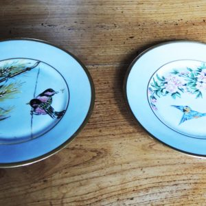 2 Assiettes Vintage CNP France