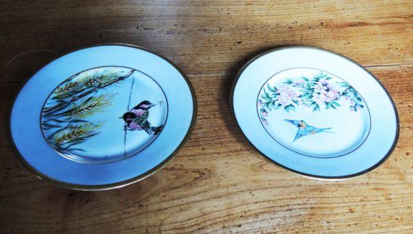 2-anciennes-assiettes-en-porcelaine-cnp-france